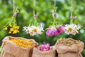 Blumen trocknen und als Dekoration verwenden