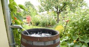 meine regenwasser sammeln tipps f r deinen garten. Black Bedroom Furniture Sets. Home Design Ideas