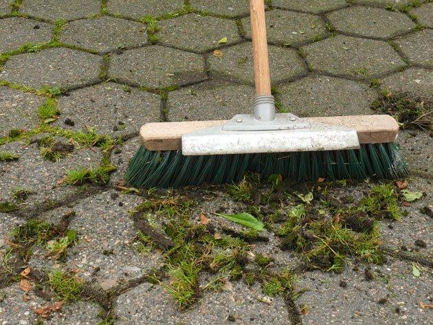Moos entfernen Besen Bürste