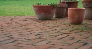 Moos entfernen Terrasse