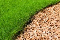 rasen wächst ins beet – 4 tipps dagegen, Garten und erstellen
