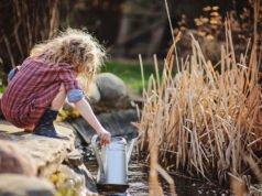 Gartenteich kindersicher machen
