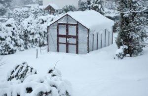 Schnee entfernen Gewächshaus