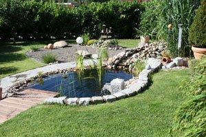 Gartenteich planen und anlegen