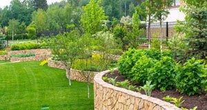 Rasen neu anlegen in 6 Schritten
