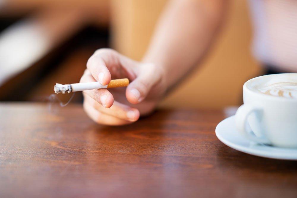 Zigarettenasche gegen Blattläuse