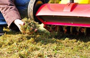 Frühjahrskur für den Rasen in 3 Schritten
