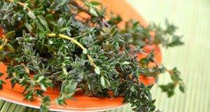 Thymian, Rosmarin und Oregano für die mediterrane Küche
