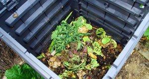 Kompost Streit Nachbar