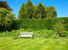 Einbruchschutz Garten Tipps