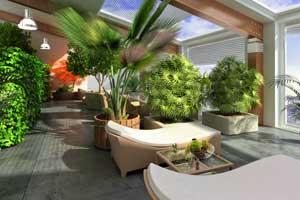 Palmen tipps zur pflege und berwintern for Wintergarten einrichtung modern