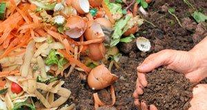 Kompost reif Komposterde