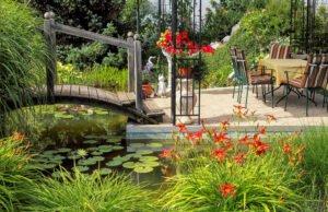 Pflanzenpflege im Teich
