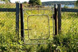 Grund eines Streites: Der verwahrloste Garten des Nachbarn