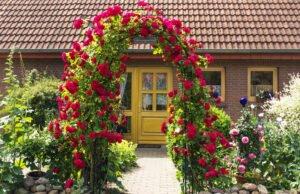 Rosenbogen aufstellen