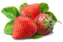 Erdbeeren sind ganz pflegeleicht