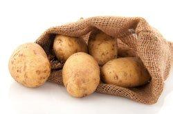Kartoffeln selber anzubauen ist gar nicht so schwer