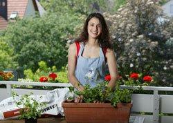 Holen Sie sich das Gartenfeeling nach Hause