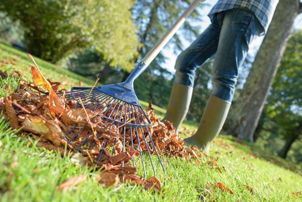 Gartenarbeit September - Laub harken