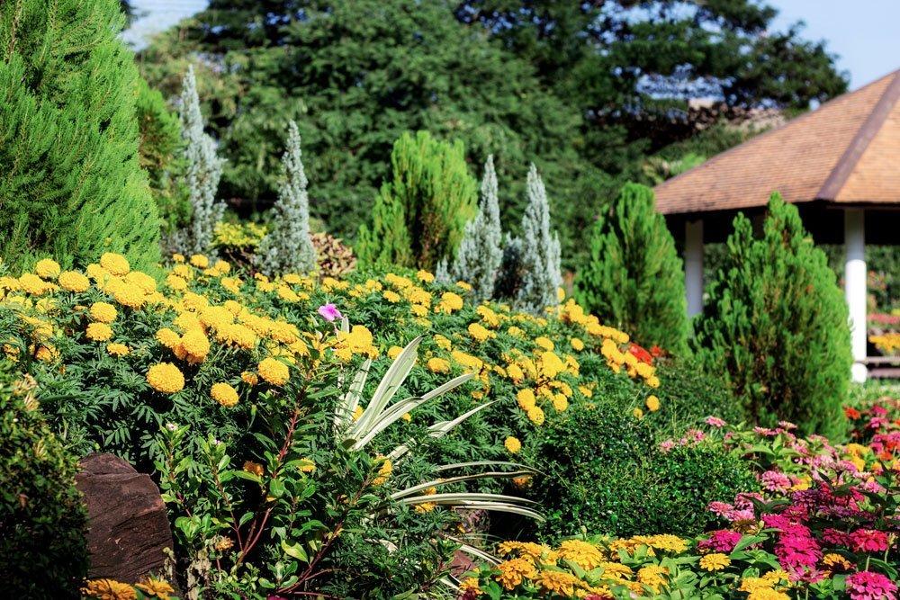 Gartenarbeit September
