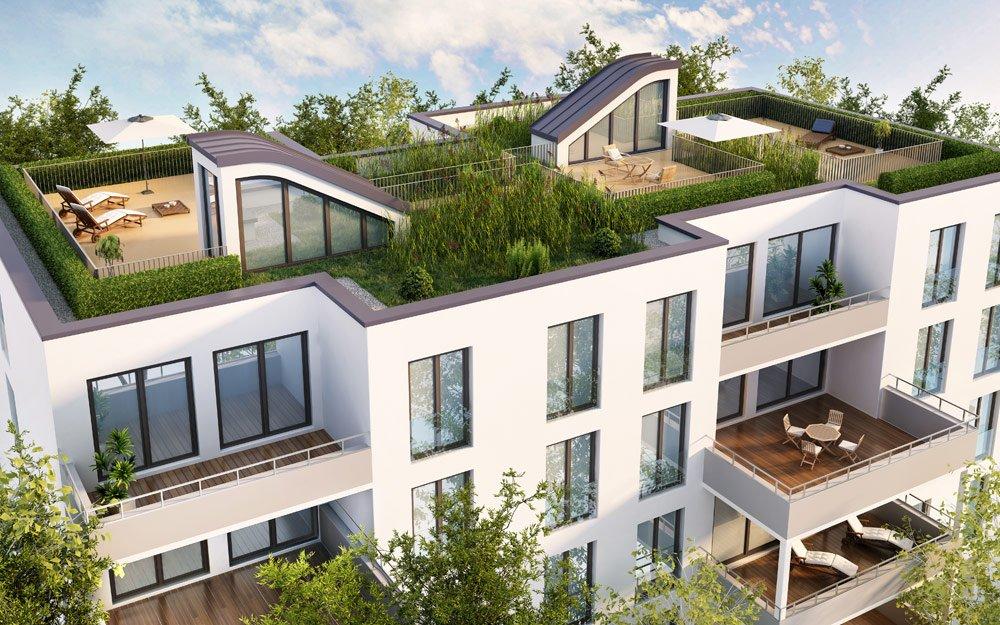 Dachgarten anlegen