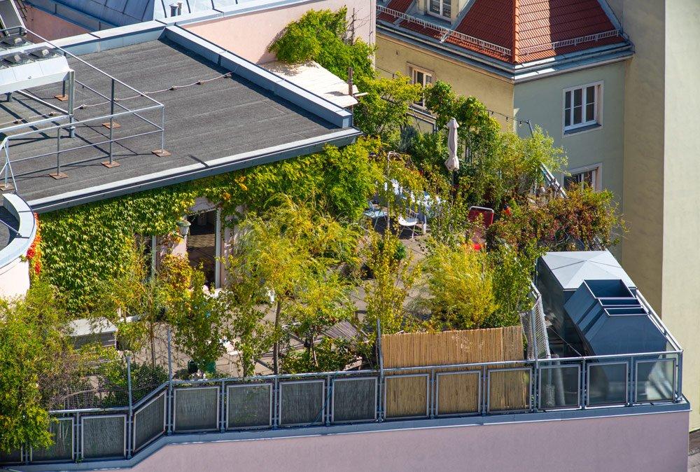 Dachgarten bepflanzen