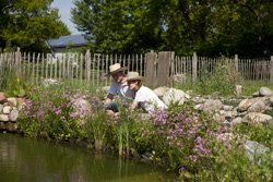 Im Mai steht die Teichpflege an