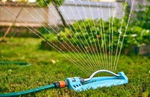Gartenbewässerung Tipps