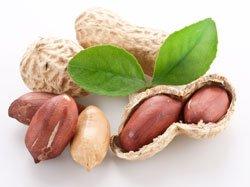Bauen Sie Erdnüsse einfach selber an