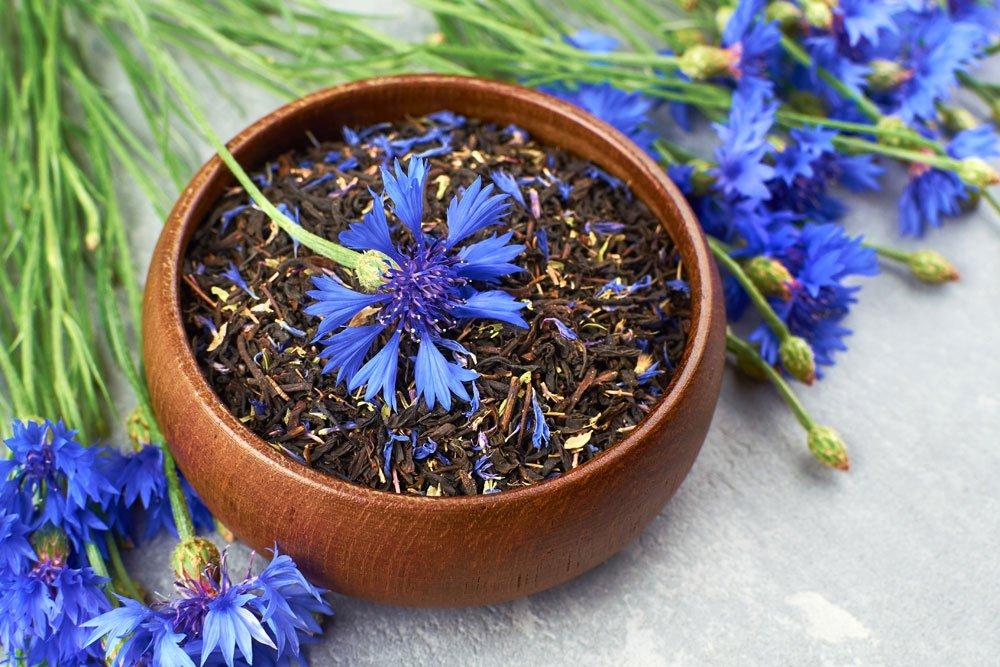 Verwendung für Kornblumen