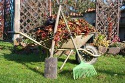 Mitte Oktober sollten Sie Ihren Garten winterfest machen