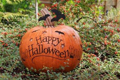 Feiern Sie doch eine Halloween-Party im Garten