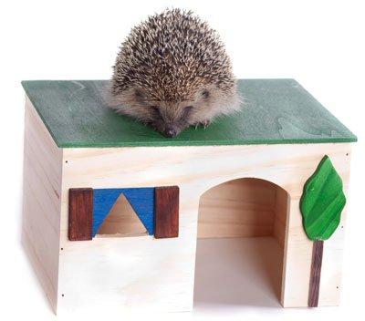 Ein Igelhaus können Sie auch selber bauen