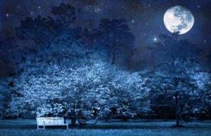 Gärtnern mit dem Mond