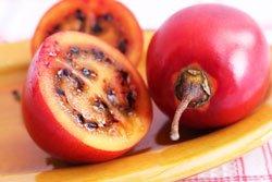 Tamarillos schmecken süß-sauer