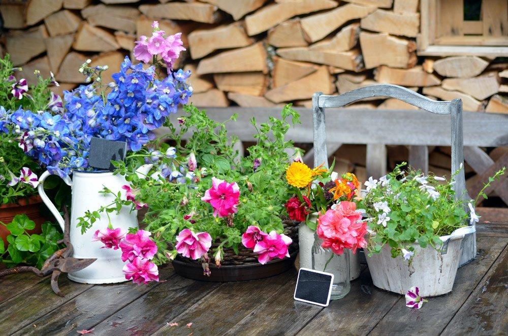 Gartenparty: Dekoration