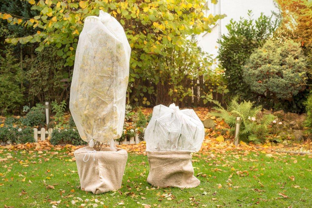 Gartenvlies als Winterabdeckung nutzen
