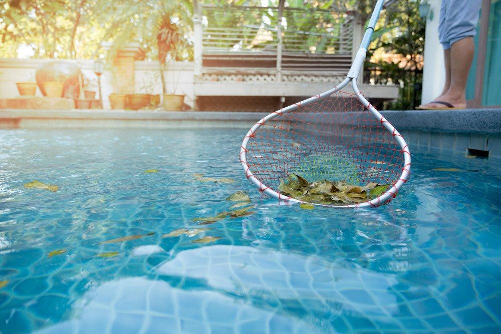 Blätter aus dem Pool entfernen