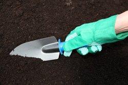 Untersuchen Sie Ihren Boden