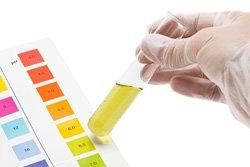 pH-Wert bestimmen