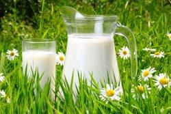 Milch ist ein guter Pflanzendünger