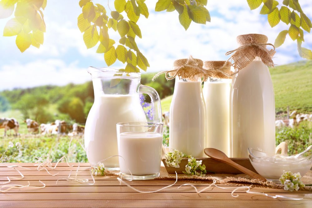 Frische Milch hilft bei Mehltau an Pflanzen