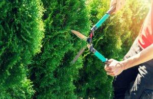 Strom sparen im Garten