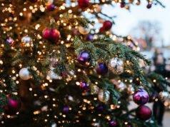 Weihnachtsbeleuchtung Garten