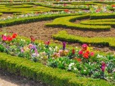 französischen Garten anlegen