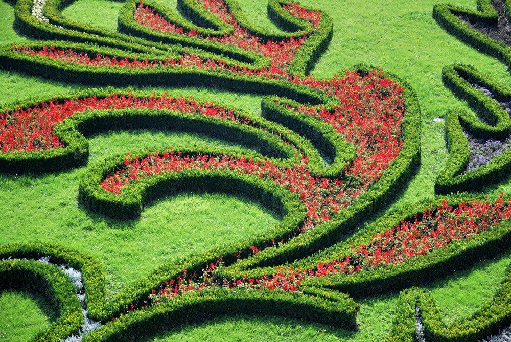 französischer Garten Pflanzen
