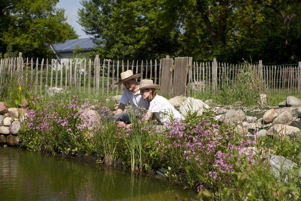 Teichpflege im Frühjahr: So machen Sie Ihren Teich fit