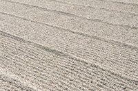 Kies/Sand auffüllen