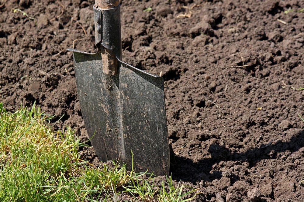 Zen-Garten: Rasen entfernen
