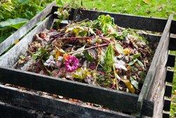 Grünschnitt kompostieren